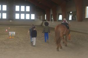 Pferd mit Cowboys